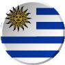 roveraronda-de-negocios-participante-bandera7